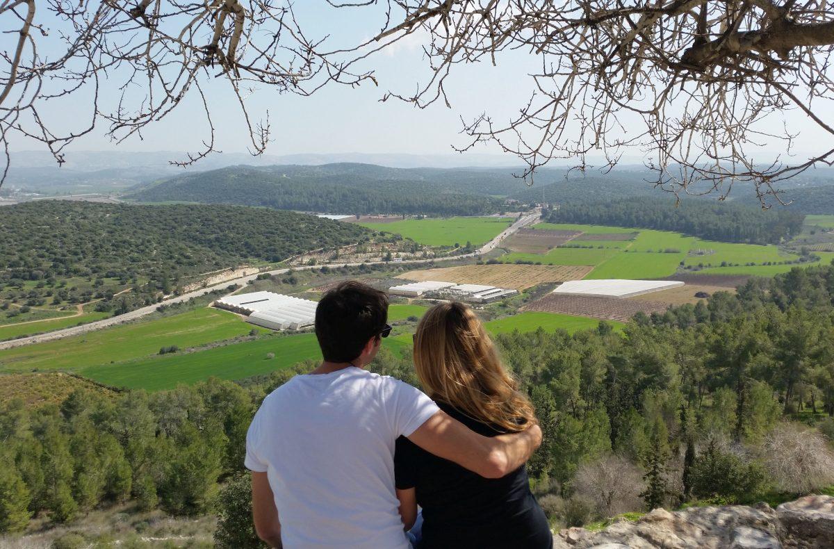 Judean Hills Wine Tour