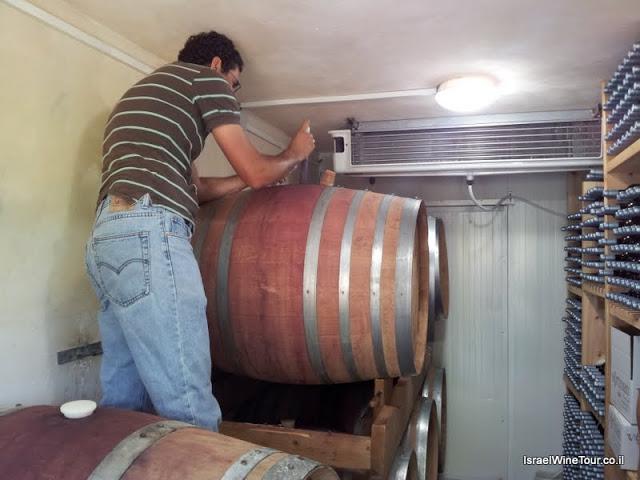 Visiting the carmel region of israel- vortman winery