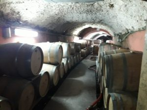 120 year old tunnels – dug by the clergy today used for aging wine