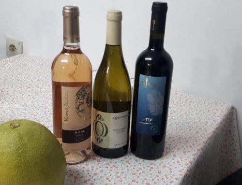 2019 Updates: Ramot Naftaly, Vortman and Seahorse Wineries