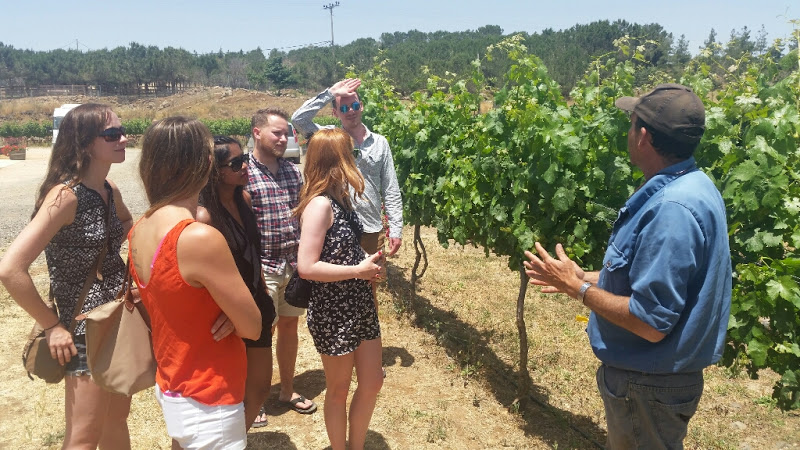 Kibbutz member and Vintner Steve Applebaum with our group